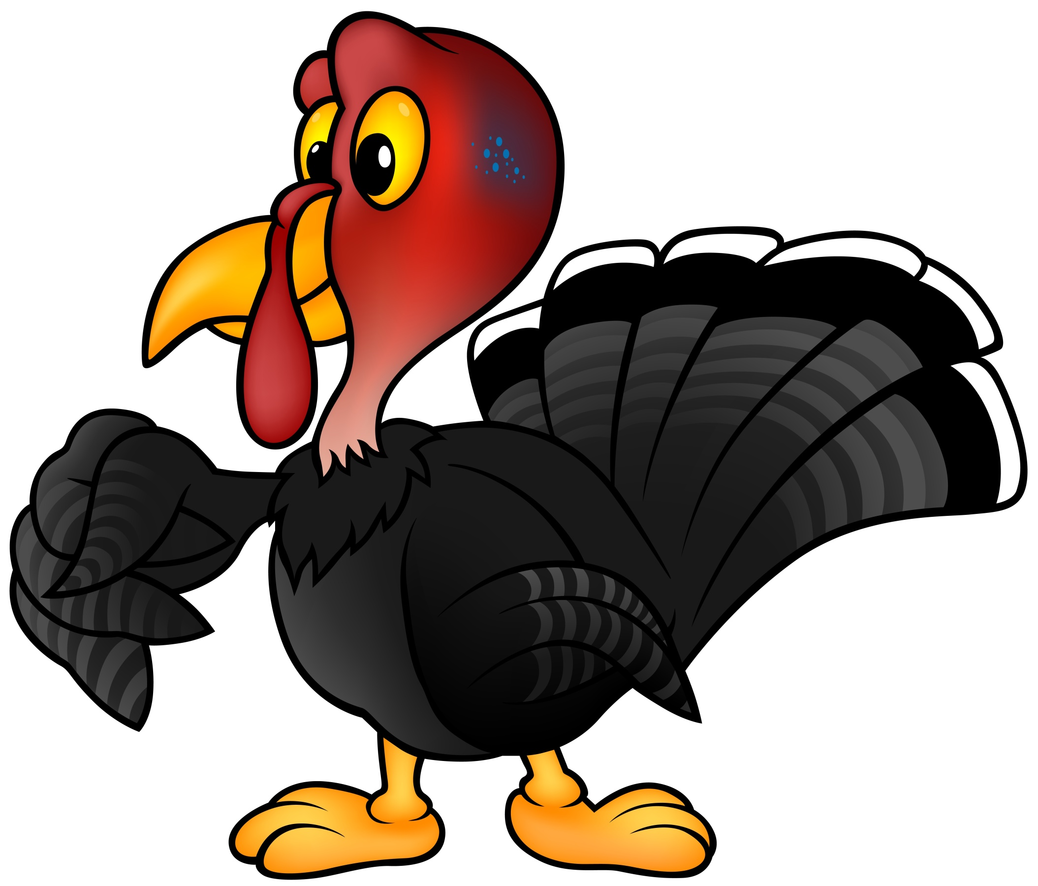 The Power Of Symbolswhat Does The Word Turkey Mean Structured